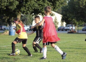 Bumblebee Soccer